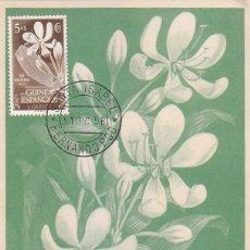 Sellos: GUINEA ESPAÑOLA FLORA PRO INDIGENAS 1952 (EDIFIL 314) EN BONITA Y RARA TARJETA MAXIMA MOD 2.. Lote 135115286