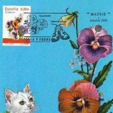 Sellos: EDIFIL 4465, PENSAMIENTO, TARJETA MÁXIMA PRIMER DÍA DE 1-10-2009. Lote 142713186