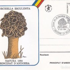 Sellos: ANDORRA ESPAÑOLA NATURALEZA 1984 MICOLOGIA HONGOS SETAS (EDIFIL 181) EN TARJETA MAXIMA PRIMER DIA.. Lote 144239086