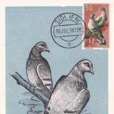 Sellos: IFNI PRO INFANCIA 1957 PALOMAS (EDIFIL 135) EN BONITA Y RARA TARJETA MAXIMA. MPM.. Lote 22127991