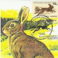 Sellos: 10 TARJETAS MAXIMAS DE RUMANIA CON DIFERENTES ANIMALES .FAUNA-. Lote 286943698