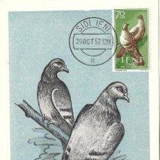 Sellos: PALOMAS AVES FAUNA IFNI PRO INFANCIA 1957 (EDIFIL 137) EN BONITA Y RARA TARJETA MAXIMA.. Lote 287867838