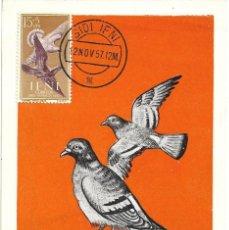 Sellos: PALOMAS AVES FAUNA IFNI PRO INFANCIA 1957 (EDIFIL 136) EN BONITA Y RARA TARJETA MAXIMA.. Lote 287867988