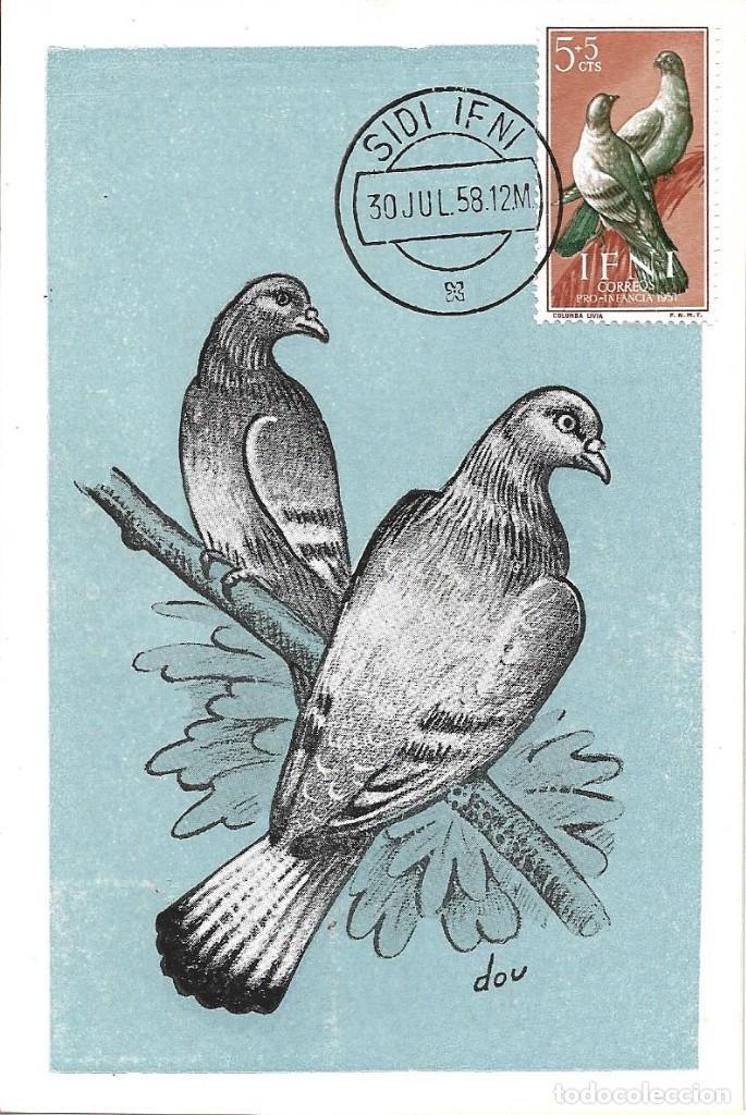 PALOMAS AVES FAUNA IFNI PRO INFANCIA 1957 (EDIFIL 135) EN BONITA Y RARA TARJETA MAXIMA. MPM (Sellos - España - Dependencias Postales - Tarjetas Máximas)