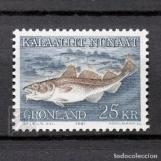 Sellos: GROENLANDIA 1981 ~ FUANA MARINA: GADUS MORHUA ~ SELLO NUEVO MNH LUJO. Lote 178674255