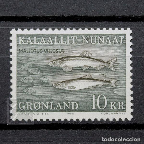 GROENLANDIA 1986 ~ FAUNA MARINA: MALLOTUS VILLOSUS ~ SELLO NUEVO MNH LUJO (Sellos - Extranjero - Europa - Dinamarca)