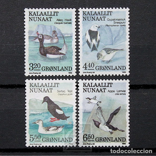 GROENLANDIA 1989 ~ FAUNA: AVES (III) ~ SERIE NUEVA MNH LUJO (Sellos - Extranjero - Europa - Dinamarca)