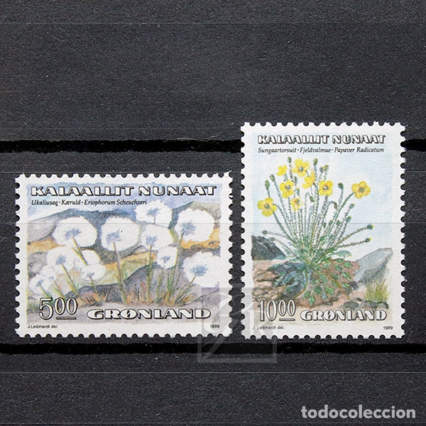 GROENLANDIA 1989 ~ FLORA: FLORES (I) ~ SERIE NUEVA MNH LUJO (Sellos - Extranjero - Europa - Dinamarca)