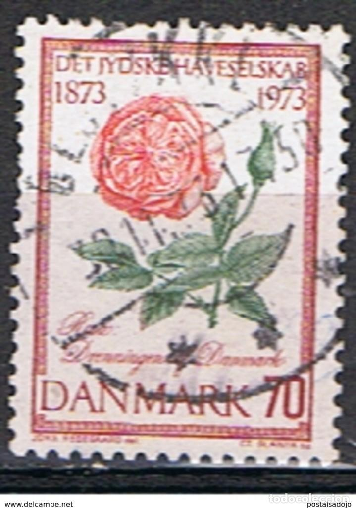DINAMARCA // YVERT 553 // 1973 ... USADO (Sellos - Extranjero - Europa - Dinamarca)