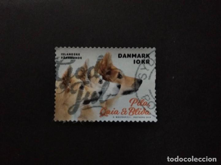 DINAMARCA 2019. MY DOG ON A STAMP (2019). MI:DK 1989, (Sellos - Extranjero - Europa - Dinamarca)