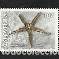 Sellos: ESLOVENIA 2001 IVERT 321 *** FOSILES - ESTRELLA DEL MAR. Lote 103623175