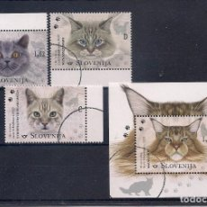 Sellos: ESLOVENIA 2020 - FAUNA - GATOS - SPECIMEN (VALOR FACIAL). Lote 222489865