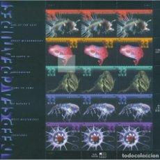 Briefmarken - ESTADOS UNIDOS 2000 PECES DEL ABISALES DEEP SEA FISH PANEL DE 20V MNH SC 3439-43SP YV 3130-34 - 122023543