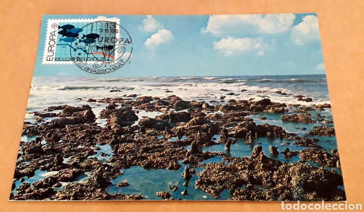 TARJETA MÁXIMA BÉLGICA EUROPA CEPT 1986 (Sellos - Temáticas - Europa Cept)