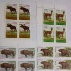 Sellos: BIELORRUSIA, SERIE DE 5 SELLOS, ANIMALES PROTEGIDOS EN PELIGRO DE EXTINCIÓN.EN BLOQUES DE 4 SELLOS N. Lote 80878079