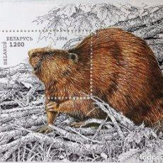 Sellos: BIELORRUSIA, HOJA BLOQUE DE, ANIMAL EN PELIGRO AÑO 1996. Lote 95751555