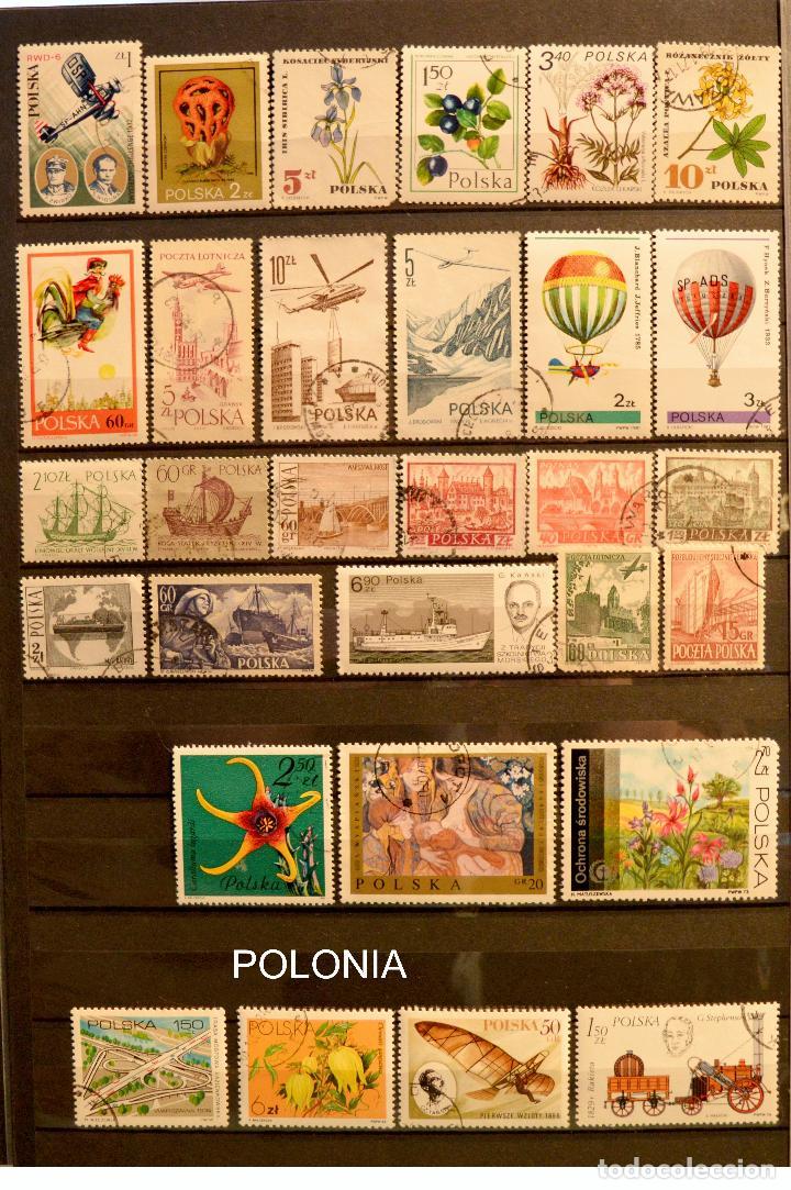 Sellos: LOTE 550 SELLOS EUROPA SELLO USADO VER TODOS EN FOTOGRAFIAS SUECIA LUXEMBURGO MONACO POLONIA GRECIA - Foto 7 - 107242587