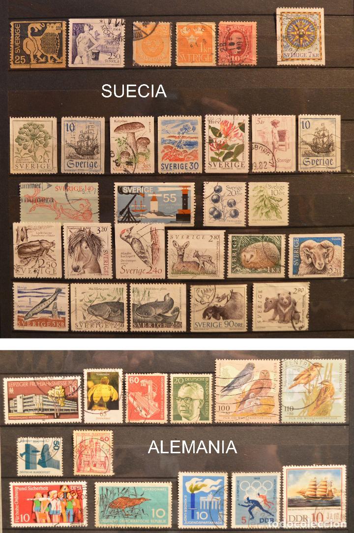 Sellos: LOTE 550 SELLOS EUROPA SELLO USADO VER TODOS EN FOTOGRAFIAS SUECIA LUXEMBURGO MONACO POLONIA GRECIA - Foto 11 - 107242587