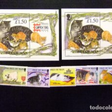 Sellos: ISLA DE MAN ISLE OF MAN 1996 FAUNE CHATS FAUNA GATOS CATS YVERT 705 / 09 + BLOC 27 / 29 ** MNH. Lote 116568779