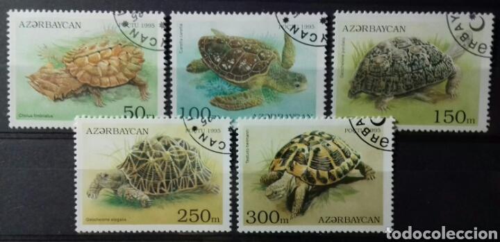 SELLOS DE AZERBAIYÁN, TORTUGAS 1995 (Sellos - Extranjero - Europa - Otros paises)