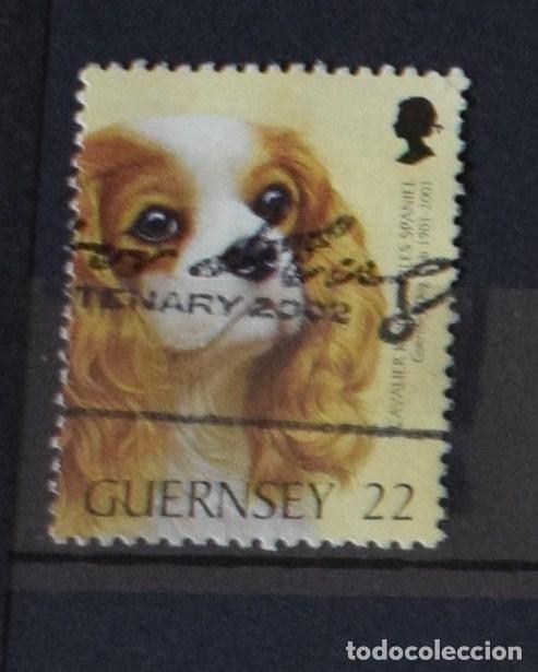 Sellos: lote 27 sellos diferentes de Guernsey - Foto 2 - 156010258