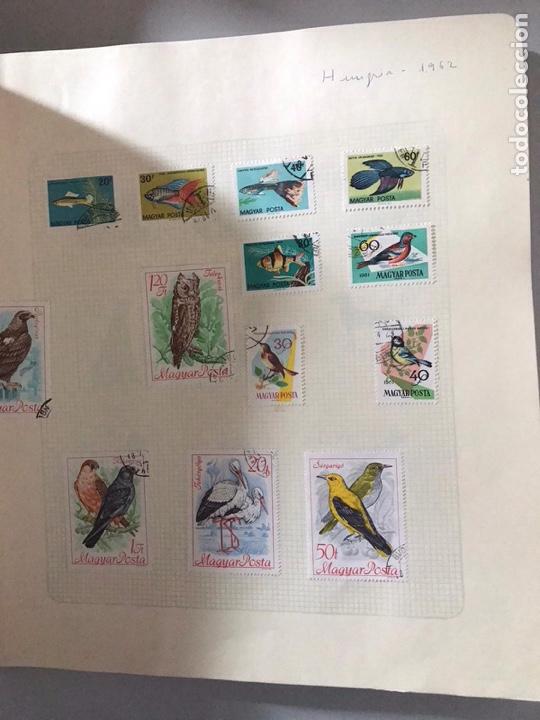 Sellos: Álbum de sellos del mundo ver fotos - Foto 21 - 180881942