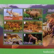 Sellos: GIBRALTAR 2012 ANIMALES SALVAJES MICHEL BLOC 109 **. Lote 205440293