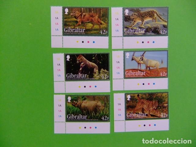 GIBRALTAR 2012 ANIMALES SALVAJES MICHEL BLOC 109 ** (Sellos - Extranjero - Europa - Otros paises)