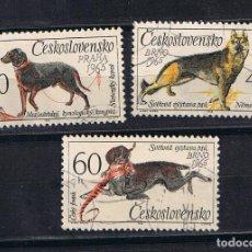 Sellos: CHECOSLOVAQUIA 1965 PERROS - TRES SELLOS USADOS MICHEL 1542. Lote 212245366