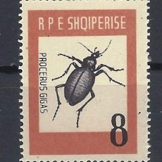 Sellos: ALBANIA 1963 - FAUNA, ESCARABAJO CÁRABO GIGAS - MNH**. Lote 225752217