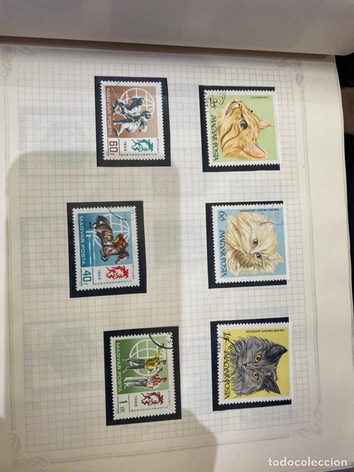 Sellos: Álbum de sellos antiguos internacional - Foto 19 - 253626690