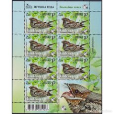 Sellos: BY1406-2 BELARUS 2021 MNH BIRD OF THE YEAR - THE EUROPEAN NIGHTJAR. Lote 293409458