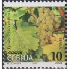 Sellos: ⚡ DISCOUNT SERBIA 2020 GRAPES – VITIS VINIFERA L. MNH - FLORA. Lote 295971738