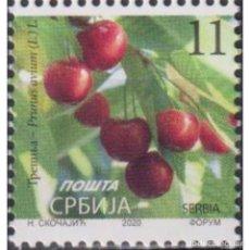 Sellos: ⚡ DISCOUNT SERBIA 2020 CHERRY - PRUNUS AVIUM (L.) L. MNH - FLORA, FRUIT. Lote 295971808