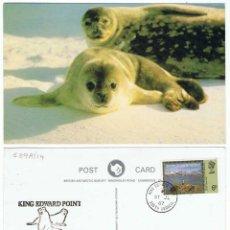 Sellos: POSTAL FALKLAND ISLANDS DEPENDENCIES. PRIMER DÍA. CIRCULADA 31-07-1987. MATASELLOS CONMEMORATIVO. Lote 58514317
