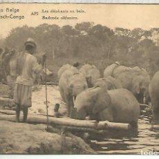 Sellos: CONGO BELGA ENTERO POSTAL ELEFANTES ELEPHANT . Lote 195223585