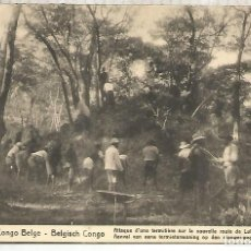 Sellos: CONGO BELGA ENTERO POSTAL TERMITERO INSECTO INSECT TERMITE. Lote 262056105