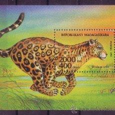 Sellos: MADAGASCAR HB 94*** - AÑO 1994 - FAUNA - ANIMALES SALVAJES. Lote 22010261