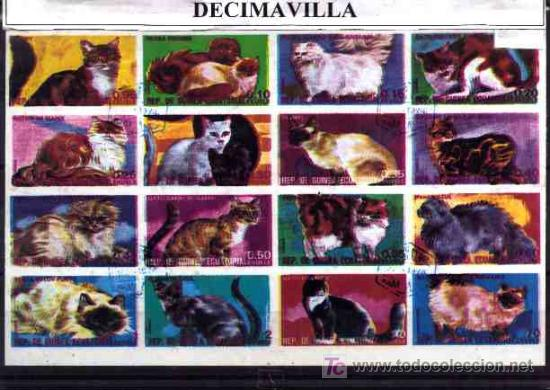 FAUNA, GUINEA ECUATORIAL, GATOS, L153, HOJA-BLOQUE USADA SIN DENTAR (Sellos - Temáticas - Fauna)