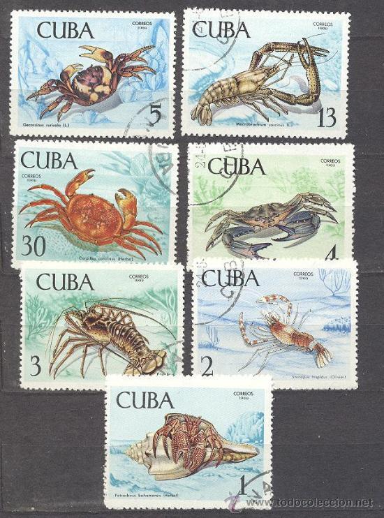 CUBA- TEMA PECES (Sellos - Temáticas - Fauna)