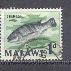 Sellos: MALAWI- PECES- USADO. Lote 24541979