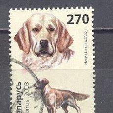 Sellos: BIELORRUSIA,2003-PERROS-USADO. Lote 26448896