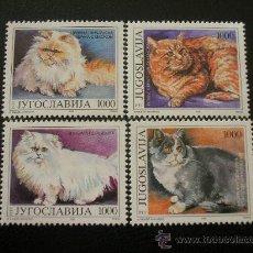 Sellos: YUGOSLAVIA 1992 IVERT 2408/11 *** FAUNA - GATOS. Lote 34100909