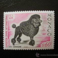 Sellos: MONACO 1975 IVERT 1037 *** EXPOSICIÓN CANINA INTERNACIONAL MONTECARLO - PERROS - FAUNA - CANICHE. Lote 36182469