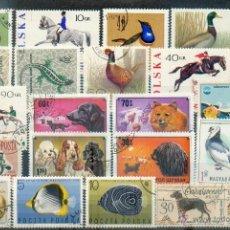 Sellos: LOTE DE 25 SELLOS DE ANIMALES DE DIVERSOS PAISES. Lote 39421031