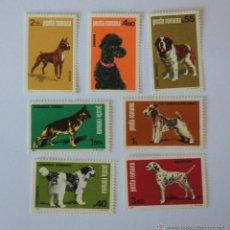 Sellos: SERIE COMPLETA 7 SELLOS DOG EXPOSITION POSTA ROMANA AÑO 1981. Lote 42171494