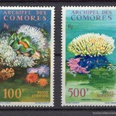 Sellos: COMORES AEREO 5/6** - AÑO 1962 - FAUNA MARINA - CORALES. Lote 56145516