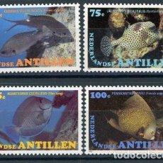 Sellos: ANTILLAS HOLANDESAS 1982 IVERT 664/7 *** FAUNA MARINA - PECES. Lote 70571705