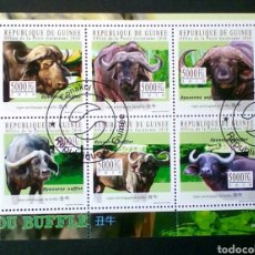 Sellos: FAUNA BUFALOS AFRICANOS HOJA BLOQUE DE SELLOS USADOS RECIENTES AUTÉNTICOS DE GUINEA. Lote 95895559
