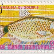 Sellos: 1975 - GUINEA ECUATORIAL - PECES EXOTICOS - MOENKHAUSIA OLIGOLEPIS. Lote 98792115